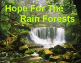 All about rain forests of the world