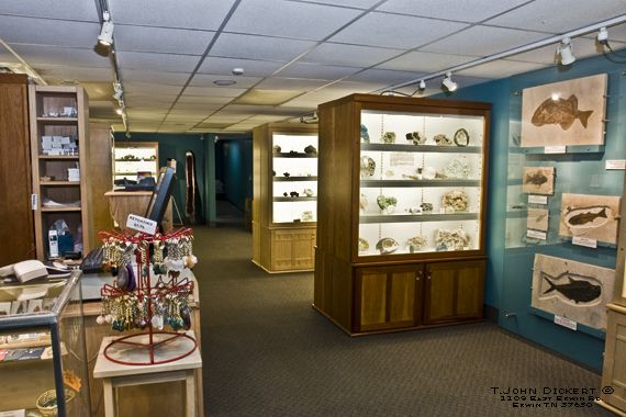 Where Is The Nc Natural History Museum Located