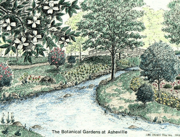 The Botanical Gardens At Asheville, Pen U0026 Ink Drawing By Lee James Pantas